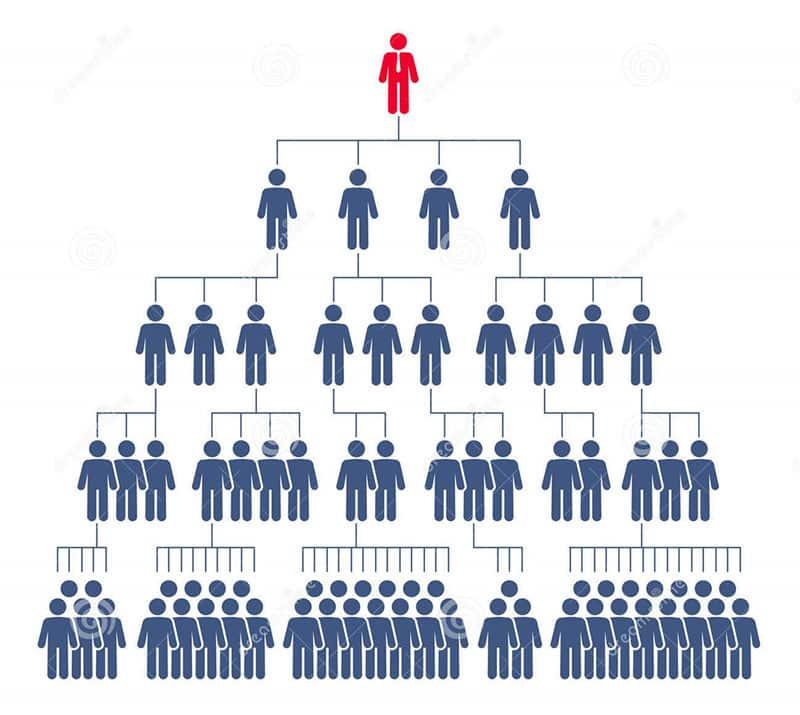 پلن بازاریابی شبکه ای